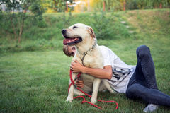 Labrador dog on the grass with his master teenager royalty free stock photography