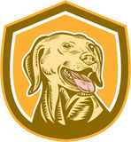 Labrador Dog Head Shield Woodcut Royalty Free Stock Image