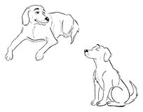 Labrador dog outlines. Cartoon outline illustration of Labrador dogs Royalty Free Stock Images