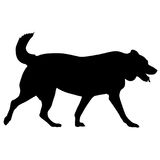 Labrador dog silhouette on a white background Stock Photos