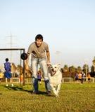 Labrador e instrutor com o brinquedo da mastigação do cão no parque imagens de stock