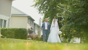 Labrador e um casamento acoplam dar uma volta perto das árvores verdes e das casas bonitas no dia ensolarado filme