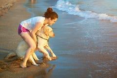 Labrador furchtsam vom Wasser Lizenzfreie Stockbilder