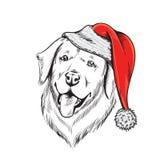 Labrador i den Santa Claus hatten stock illustrationer