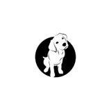 Labrador. Logo design on a white background Royalty Free Stock Images