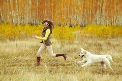 Labrador med ägaren Arkivbild