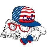Labrador portant un chapeau et une cravatte Chien de pure race Chien de vecteur Carte postale avec le Labrador hippie illustration de vecteur