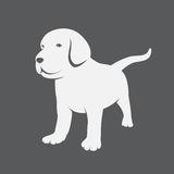 Labrador puppies. Vector image of an Labrador puppies Royalty Free Stock Photo