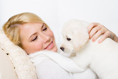 Labrador puppy lying on the woman Royalty Free Stock Photography