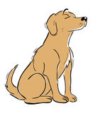 Labrador Retriever. Cartoon illustration of a Labrador Retriever dog Stock Images