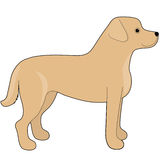 Labrador Retriever. A cartoon illustration of a Labrador Retriever Stock Image