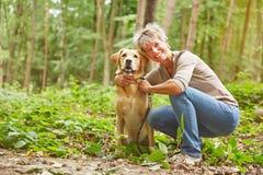 Labrador retriever con la donna Fotografie Stock