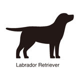 Labrador Retriever dog silhouette, side view, vector. Illustration Royalty Free Stock Photography