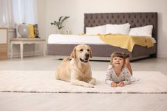 Labrador retriever jaune adorable et petite fille photo stock