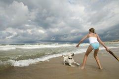 Labrador retriever playing on the beach. stock photo