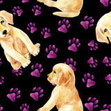 Labrador retriever puppy seamless pattern Stock Photos