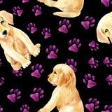 Labrador retriever puppy seamless pattern Stock Photos