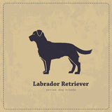Labrador retriever vector stylized silhouette. On shabby vector background. Pure stylized silhouette of a dog is easily accessible Stock Photos