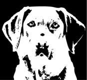 labrador retrievera Ilustracji