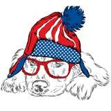Labrador in un cappello Cucciolo sveglio in vestiti Vettore del cane spaniel Fotografia Stock Libera da Diritti