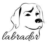 Labradorhoofd Royalty-vrije Stock Foto's