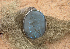 Labradorite on beach Royalty Free Stock Images