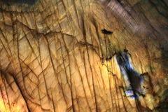 Labradoritemineralbakgrund Royaltyfri Bild