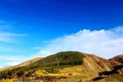 Labrang Lamasery do budismo tibetano em China Foto de Stock