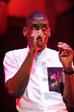 Labrinth Royalty Free Stock Photography