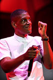Labrinth Royalty Free Stock Images