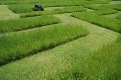Labyrint 2 van het gras Royalty-vrije Stock Afbeeldingen