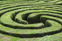 Labyrint dat van een haag wordt gemaakt Stock Foto's