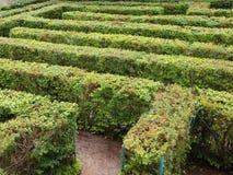 Labyrint Maze Entrance av buskar för sjukvårdaresnittgräsplan Arkivfoton