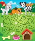Labyrint 14 med hundkapplöpning Arkivbilder