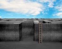 Labyrint met houten ladder en blauwe hemel stock foto