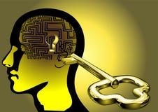 Labyrint van hersenen Stock Afbeeldingen