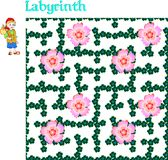 Labyrinth game. Travelling of little boy in floral maze. Royalty Free Stock Photo