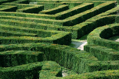 Free Labyrinth Garden Stock Images - 9835334
