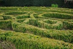Labyrinth garden at Dunedin Botanic Garden, South Island, New Zealand stock image