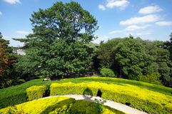 labyrinth garden in Jardin des Plantes Royalty Free Stock Image