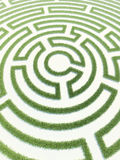 Labyrinth grass Stock Photography