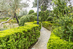 Labyrinth of green shrubs in the city of Valldemossa in the Bale Stock Image