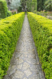 Labyrinth of green shrubs in the city of Valldemossa in the Bale Royalty Free Stock Photo
