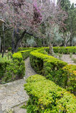 Labyrinth of green shrubs in the city of Valldemossa in the Bale Royalty Free Stock Photos