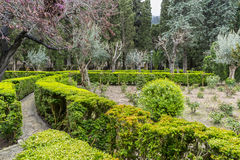 Labyrinth of green shrubs in the city of Valldemossa in the Bale Stock Photo