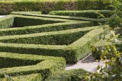 Labyrinth im Garten Stockbilder