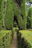 Labyrinth im königlichen Alcazar Stockbilder