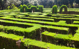 Labyrinth at Labyrinth Park of Horta Stock Photos