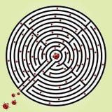 Labyrinth with ladybugs royalty free illustration