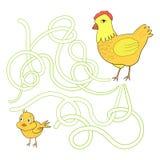Labyrinth maze find a way chicken hen Royalty Free Stock Photo